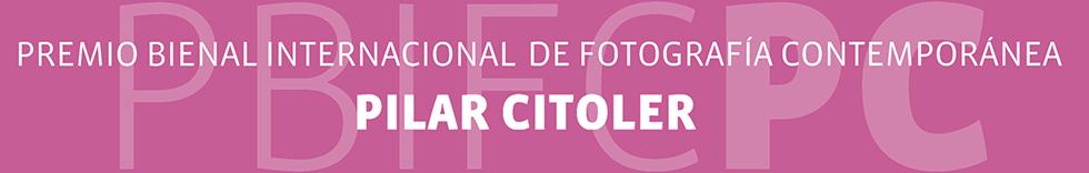 VII Premio Bienal Internacional de Fotografía Contemporánea Pilar Citoler 2013